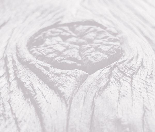 wood-bg1